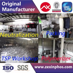 Industrial Grade STPP Manufacturer of STPP pictures & photos