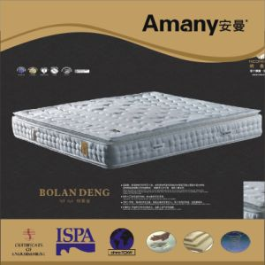 Pillow Top Mattress (NE838)