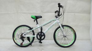 """20""""Mba304, Kid′s Bike, 6speed pictures & photos"""