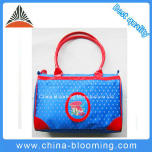 Travel Leisure Office Hand Bag Lady Handbag pictures & photos