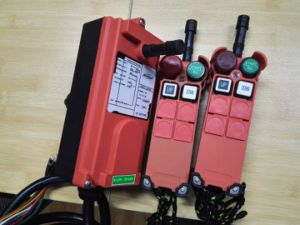 Henan Yuding F21-2s Wireless Control for Crane, Radio Remote Control Industrial Crane pictures & photos