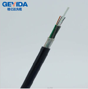 GYFTY 24core Outdoor Fiber Optic Cable with Duct pictures & photos