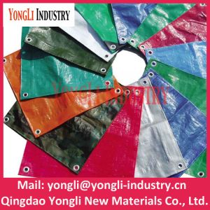 50GSM-280GSM Korea PE Tarpaulin with UV Treated for Car /Truck / Boat Cover pictures & photos