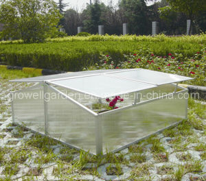 Cold Frame Greenhouse for Young Plants (C304) pictures & photos
