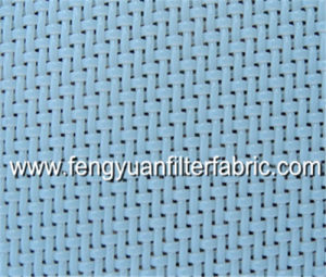 Polyester Plain Weave Mesh for Squeezed Juice pictures & photos