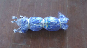 Nylon Fishing Nets pictures & photos