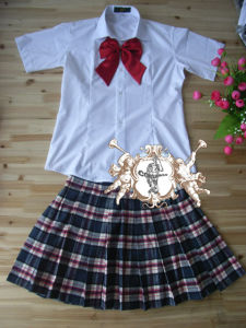 School Uniform in New Design for Girls pictures & photos