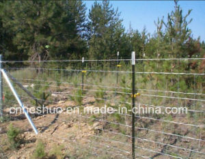 Supply Wholesale High Quality Grassland Fence with Best Price (10 years factory) pictures & photos