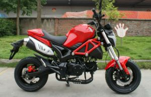 Southasian Monster 125cc Motorcycle Motorbikes (GS125-9)