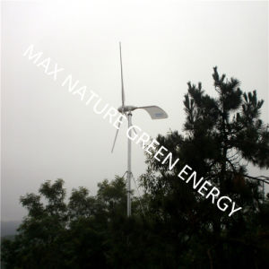 Hot Sale! ! ! Horizontal Style Wind Turbine 1kw pictures & photos