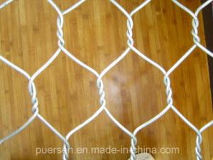 Cheap Chicken Rabbit Galvanized Hexagonal Wire Mesh pictures & photos