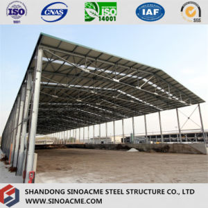 Steel Frame/ Steel Building for Industrial pictures & photos