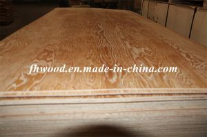 Embossed Larch Plywood
