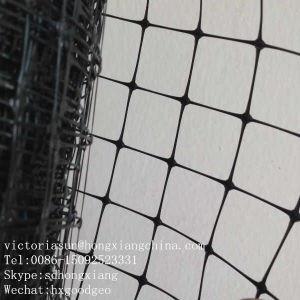Plastic Net for Vegetable Farm pictures & photos