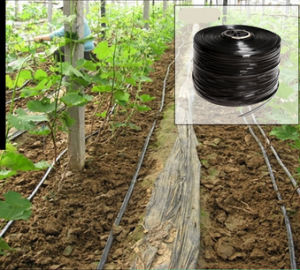 Drip Hose, Drip Irrigation Hose, Agricultural Farming Drip Irrigation Hose, Drip Irrigation Pipe Hose, Flat Hose Drip Hose for Drip Irrigation pictures & photos