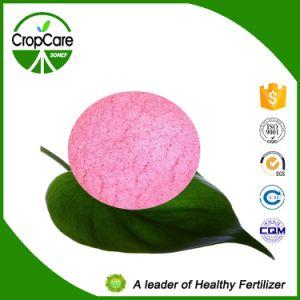 NPK Water Soluble Fertilizer (17-17-17+TE) Fertilizer Manufacturer pictures & photos