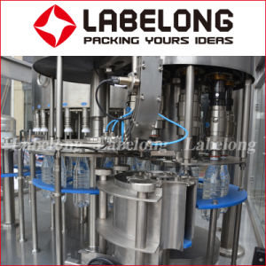Good Quality Plastic Bottle Filling Machine on Edible Oil pictures & photos