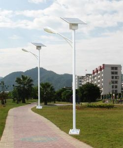 20W LED Solar Walking Light, Using for Small Roads pictures & photos