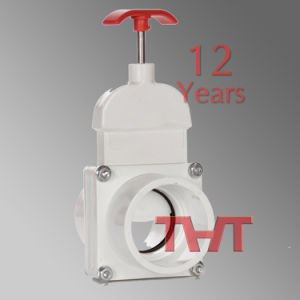 Small Size Custom White Gate Valve pictures & photos