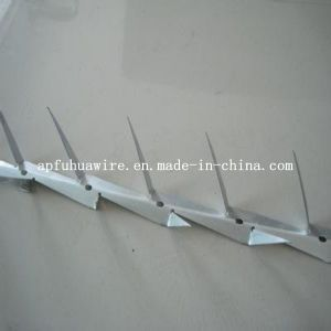 Stainless Steel Small Wall Spike Razor Wire Mesh Fence pictures & photos