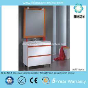 Free Standing 800*460mm Bathroom Cabinet (BLS-16065) pictures & photos