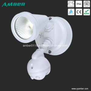 6W Outdoor 1lt LED Floodlight with Sensor pictures & photos
