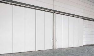 Big Size Sliding Door, Galvanized Steel Sheet, PU Foam pictures & photos