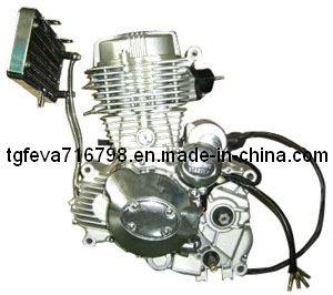 Cg250 Motorcycle Engine (167FMM)