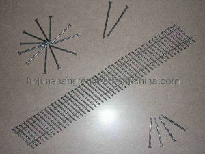 Polish/Galvanized/Painting 15 Degree Wire Coil Nails