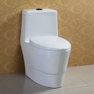 Siphonic Flushing White Ceramic One Piece Toilet pictures & photos