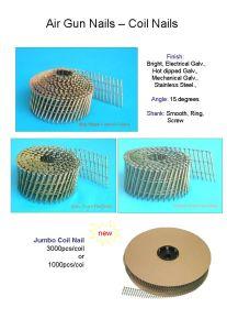 Coil Pallet Nails pictures & photos