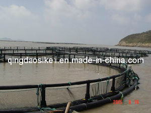 Pisciculture Deep Water Marine Salmon Farming Cages pictures & photos