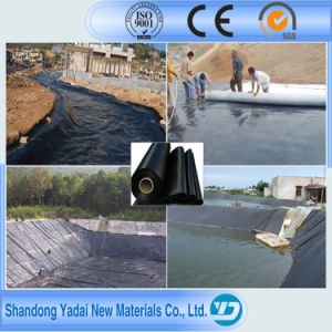 40/60/80 Mils HDPE Fish Farm Pond Liner/HDPE Impermeable Geomembrane pictures & photos