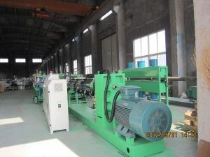 PC Hollow Sheet Extrusion Line (SJ-120) pictures & photos