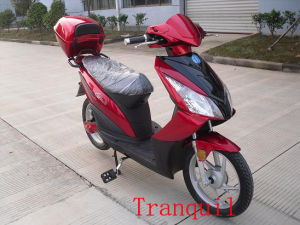 700w Electric Bicycle (AG-EB-047)