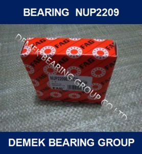 Cylindrical Roller Bearing Nup2209 E. M1. C3 pictures & photos