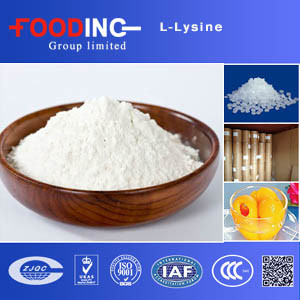 Buy Low Price Pure L-Lysine Mono HCl Pharmaceutical Grade pictures & photos
