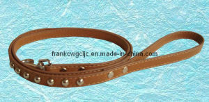 Pet Collars (GPC01020)