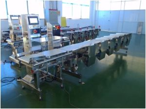 Automatic Weight Grading System for Fish, Shrimp, Seafoods Processing pictures & photos