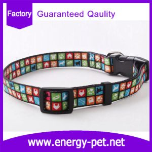 Customized Woven Pattern Cute Cat Collar Dog Collar pictures & photos