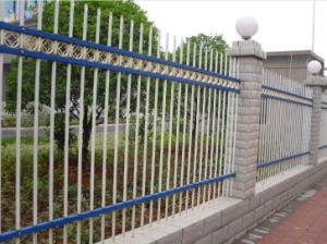 Garden Fence (DJ-081)
