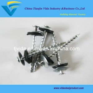 Roofing Screw Nails with Washer (9G) pictures & photos