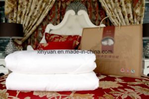 1.5-3.5kgs Natural Raw Silk Quit