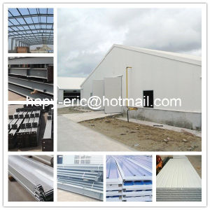 Professional Manufacturer Steel Construction Poultry House and Poultry Farm in China pictures & photos