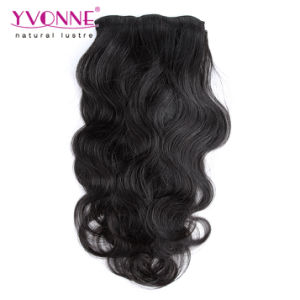 Brazilian Virgin Remy Clip in Hair Extensions pictures & photos