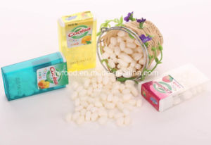16g Plastic Jar Packing Tic Tac Candy Mints pictures & photos