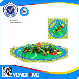 Professional Manufacturer Children Playground pictures & photos