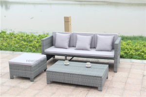 Outdoor Rattan Sofa with New design of Garden Furniture pictures & photos
