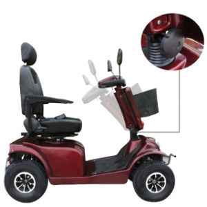 800W Motor Double Seat Electric Luggage Scooter pictures & photos