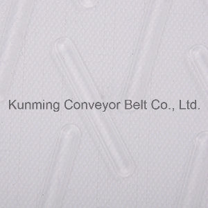 Conveyor Belt for Food (ESM200/2: 0+2.0CS/4.0PE) pictures & photos